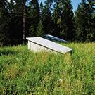 Skogslagret01_thumb