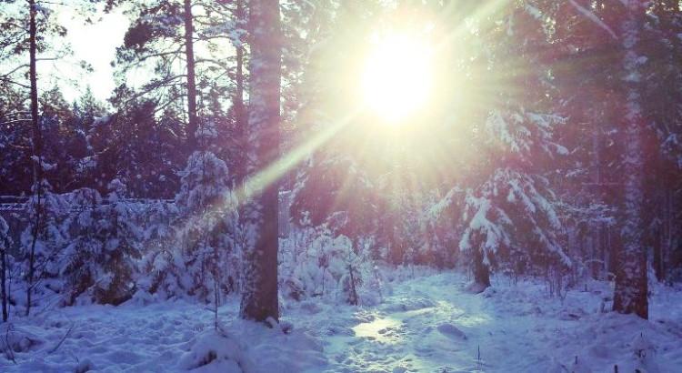 Vinterevent